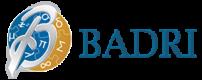 Badri Management Consultancy Logo